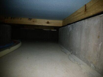 ライブリーハウス の新築 - 床下