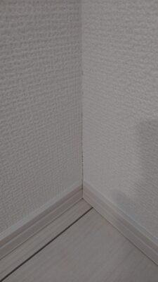 東栄住宅(越谷市)の建物診断 ー 乾燥によるクロスの隙間